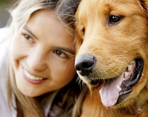 Steps you need to take to choose the right vet for your pet